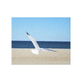 Lona de un mar de la playa de la gaviota impresion de lienzo
