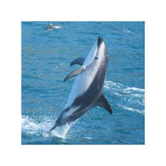 Lona del delfín impresiones en lienzo estiradas