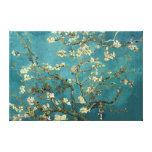 Lona del flor de la almendra impresión en lienzo estirada