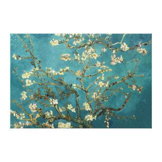Lona del flor de la almendra impresión en lona estirada