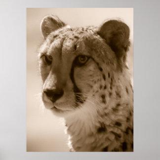 Lona del guepardo impresiones