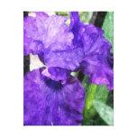 Lona del iris de la acuarela impresión en lienzo estirada