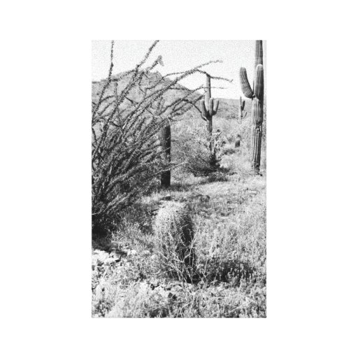 Lona del jardín del vaquero (desierto de AZ Sonora Impresion De Lienzo