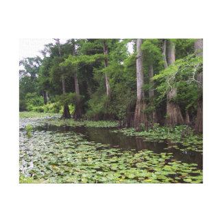 Lona del pantano de Luisiana Impresión En Lienzo