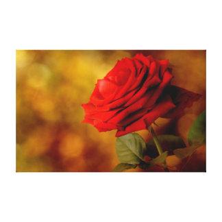 Lona del rosa rojo de Bokeh Impresión En Lienzo