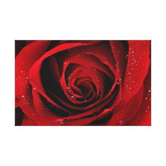lona del rosa rojo impresión en tela