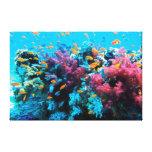 Lona envuelta 15 subacuáticos lona estirada galerias
