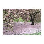 lona envuelta árbol de la flor de cerezo lienzo envuelto para galerías