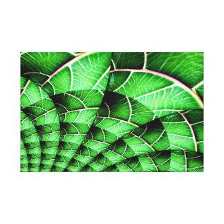 Lona envuelta - arte botánico Geometrics (verde)
