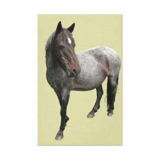 Lona envuelta caballo de Dartmoor Impresión En Tela