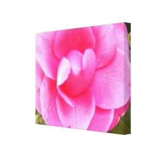 Lona - envuelta - camelia rosada oscura 1 impresión en lienzo