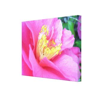 Lona - envuelta - camelia rosada oscura impresión en lienzo