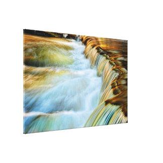 Lona envuelta cascada hermosa de la repisa lona estirada galerías