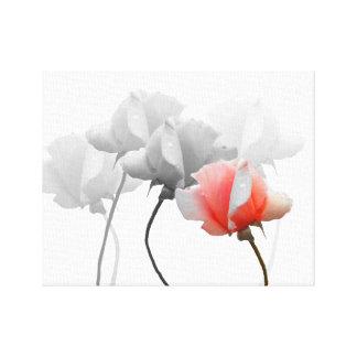 Lona envuelta con los rosas negros y blancos, un impresiones en lienzo estiradas