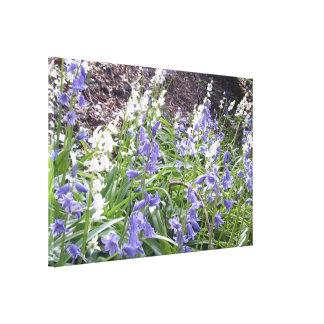 Lona envuelta de la foto 2 de los Bluebells de la Impresión En Lienzo