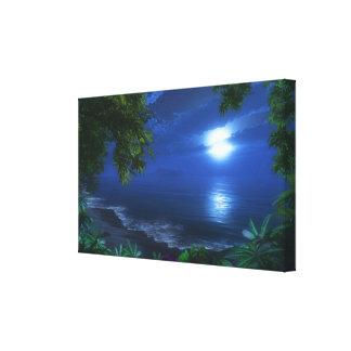 """Lona envuelta del """"primer claro de luna"""" lienzo envuelto para galerías"""