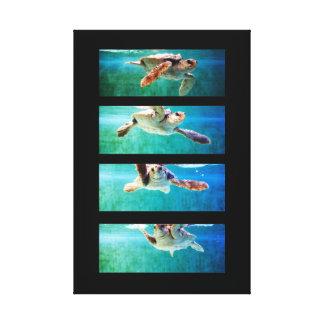 Lona envuelta estudio de la tortuga de mar del nec impresión en lienzo