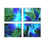 Lona envuelta flor azul lona estirada galerias