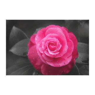 Lona envuelta flor rosada de la camelia impresión en lienzo