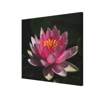 Lona envuelta flor rosado del lirio de agua impresión en lienzo
