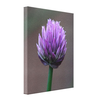 Lona envuelta floración de la flor del jardín impresión en lona