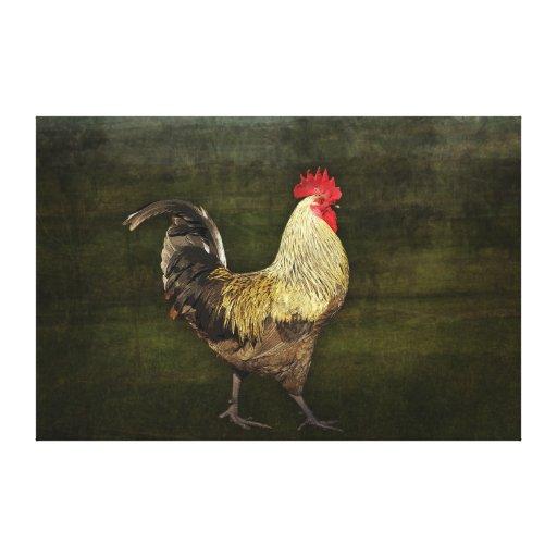 Lona envuelta gallo lona envuelta para galerias