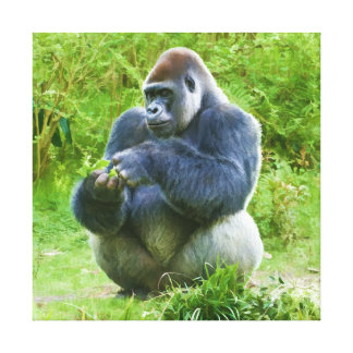 Lona envuelta gorila lona estirada galerias