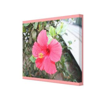 Lona envuelta hibisco rosado impresión en lienzo estirada