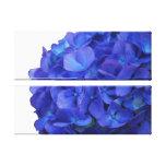 Lona envuelta Hydrangea azul Lona Envuelta Para Galerias