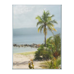 Lona envuelta Jamaica de Montego Bay de la palmera Impresiones En Lona