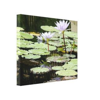 Lona envuelta jardín del agua impresión en lienzo
