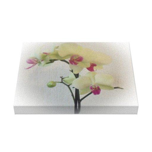 Lona envuelta orquídea impresión en lienzo
