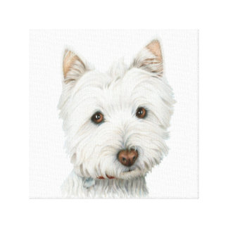 Lona envuelta perro lindo de Westie Impresiones En Lona Estiradas