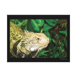 Lona envuelta reptil verde de la iguana impresión en lienzo