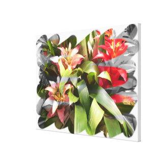 Lona - envuelta - torsión de Bromeliads Impresion De Lienzo