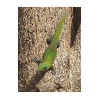 Lona escénica tropical al aire libre linda del gec lona envuelta para galerias