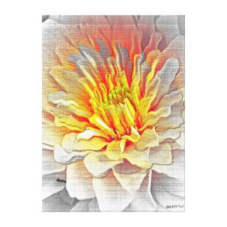 Lona estirada bosquejo del lápiz de la flor de la lienzo envuelto para galerías