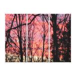 Lona estirada cielo color de rosa lona envuelta para galerias