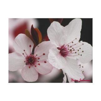 Lona estirada - flores de cerezo impresión de lienzo