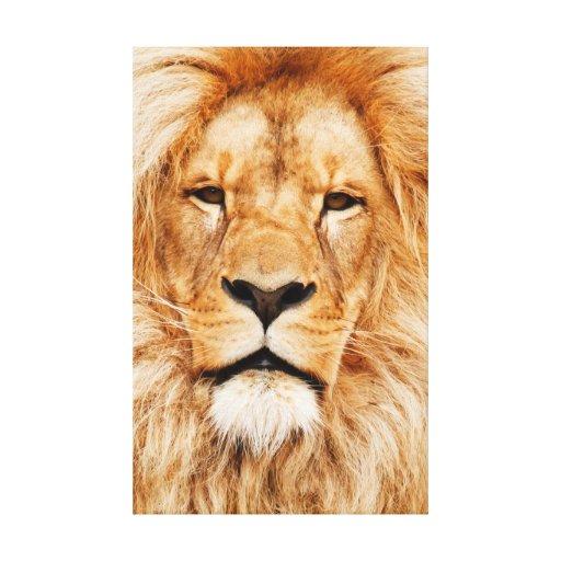 Lona estirada león impresión en lienzo estirada