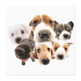 Lona linda de la pared de los perros impresion en lona