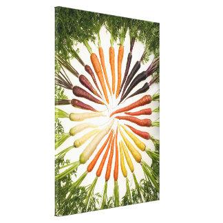 Lona multicolora de las zanahorias del arco iris impresión en lienzo