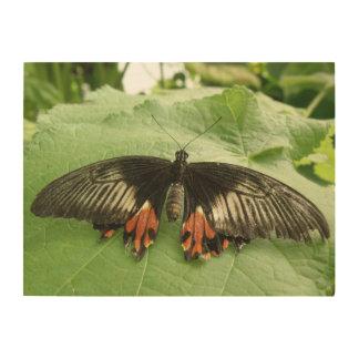 Lona negra bonita de madera de la mariposa del impresión en madera
