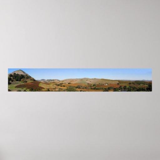 Lona panorámica de Napa Valley CA de los viñedos d Impresiones
