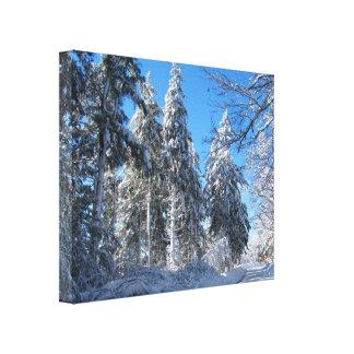 Lona pegajosa del ~ de la nieve 32 impresiones de lienzo