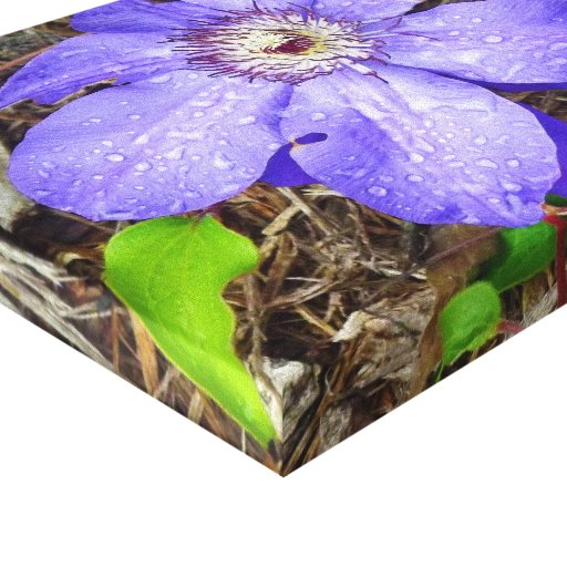 Lona púrpura de la flor impresiones de lienzo