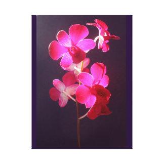 Lona púrpura magenta de la foto de la orquídea del impresión en lienzo