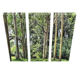 Lona triple del eucalipto impresión en lona estirada