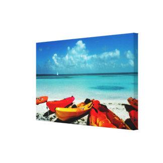 Lona tropical del kajak del océano lona estirada galerias