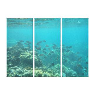 Lona tropical subacuática de la escena de los pesc impresión en lienzo estirada